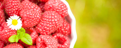 {#/wp-content/uploads/images/raspberries.jpg}